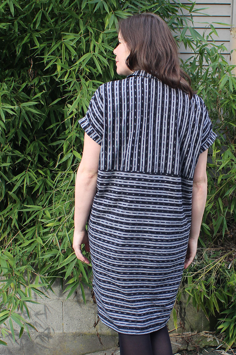 Style Arc Blaire Shirtdress