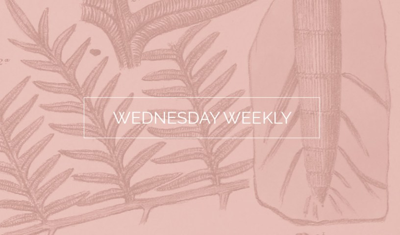 Wednesday Weekly #22