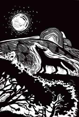 A fox barks