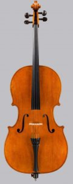 2015 cello based on GB Ruggieri c.1685
