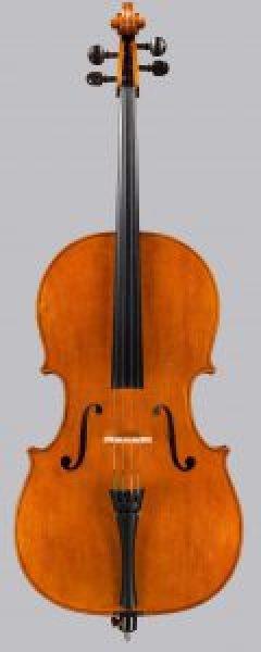2015 cello based on GB Ruggieri c.1685