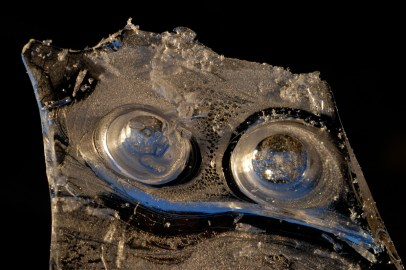 2008-008