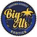 big als logo