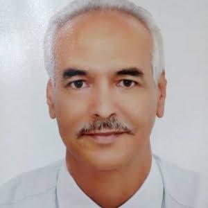 Abdelhamid Mahmoud
