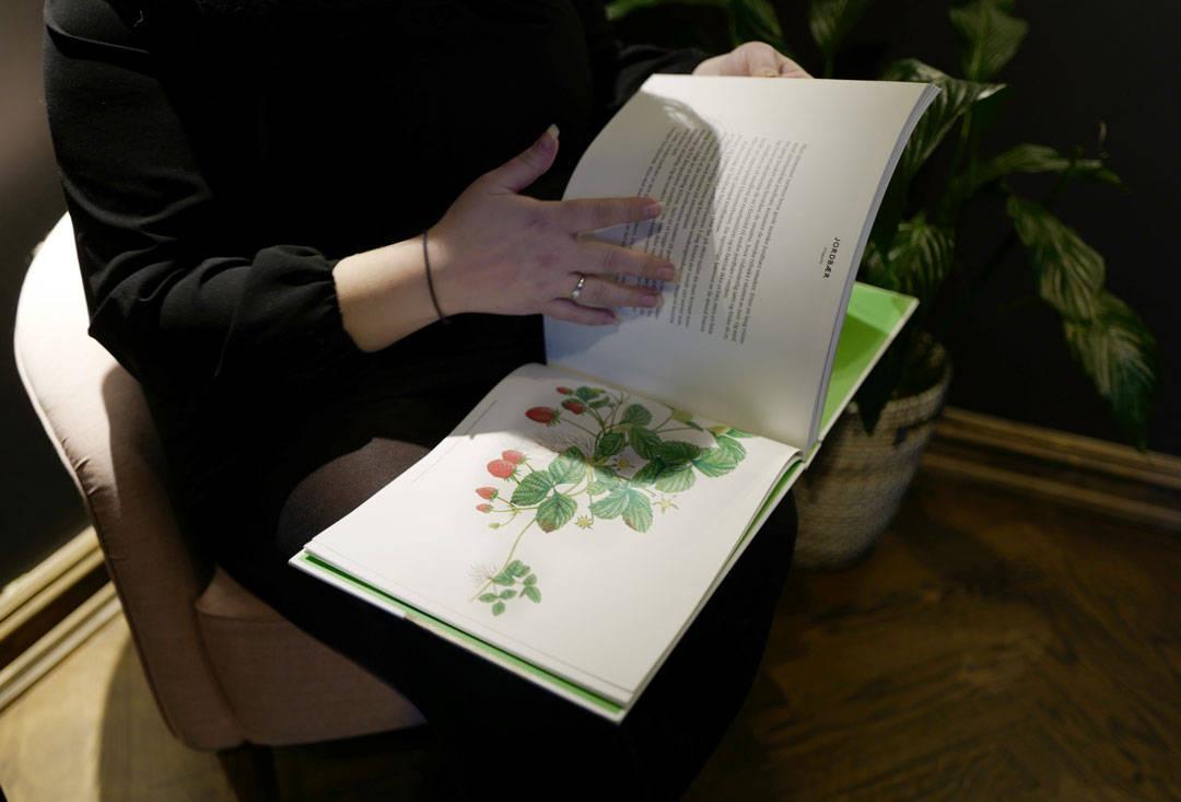 Flotte illustrasjoner i boken.