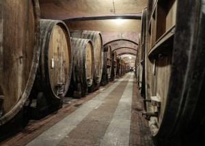 Hva skjer når de store vinprodusentene går over til å bli økologiske?