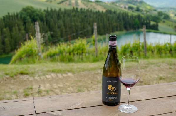 Abruzzo_wine_italianwine_helleskitchenL1680224