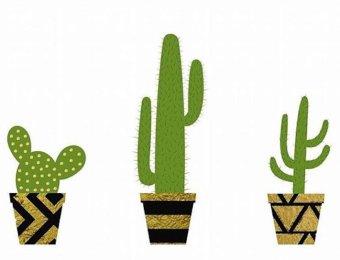 poster-cactus