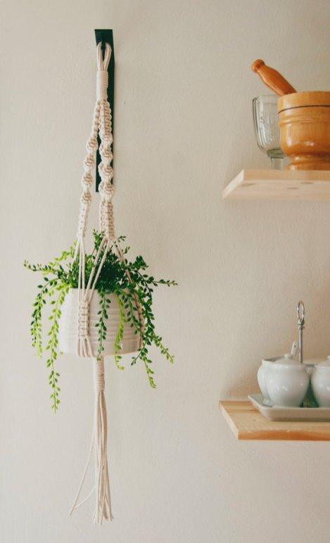 O trouver des pots pour suspendre les plantes for Plante pendante