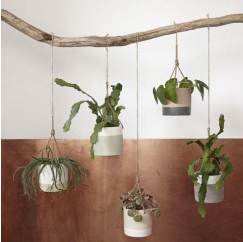 O trouver des pots pour suspendre les plantes Pot design pour plante interieur