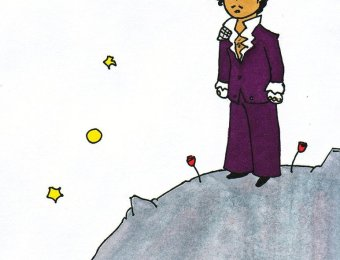 prince petit prince by fauna93