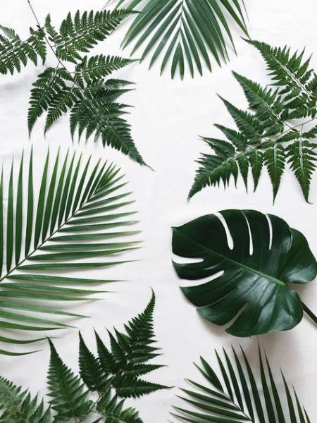 Tendances Déco 2017 // Hëllø Blogzine blog deco & lifestyle www.hello-hello.fr #deco #botanique #trends