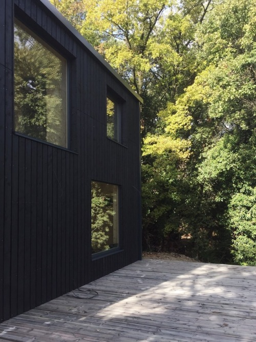 Tout ce qu'il faut savoir avant de se lancer dans la construction d'une maison en bois
