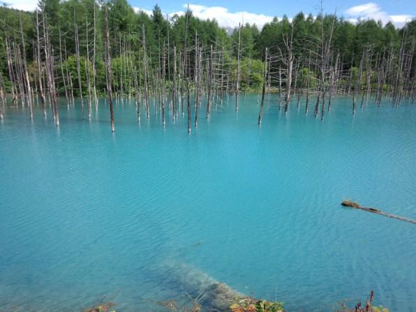 青い空と青い池