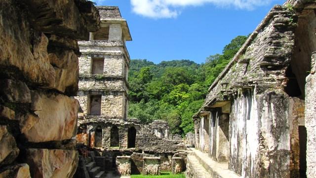 2014.06.21 - Palenque 04.1