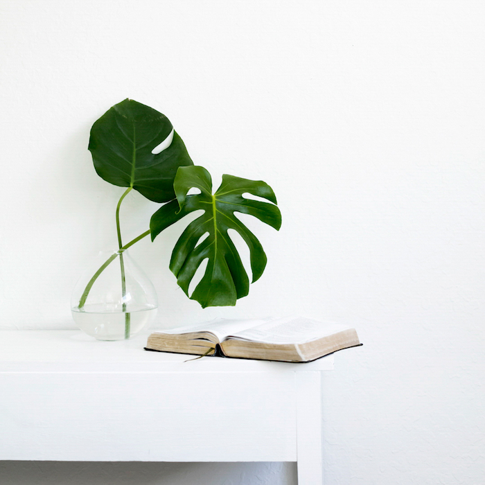 What I Learned about Living with Less + Minimalism | helloallisonblog.com