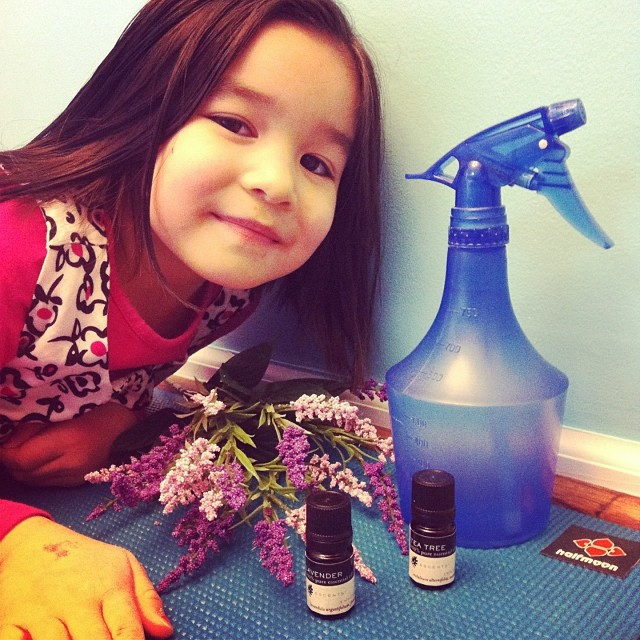 Learn how to make non-toxic homemade lavender cleaning spray with ingredients you probably already have at home! Anti-bacterial, anti-fungal and smells great.