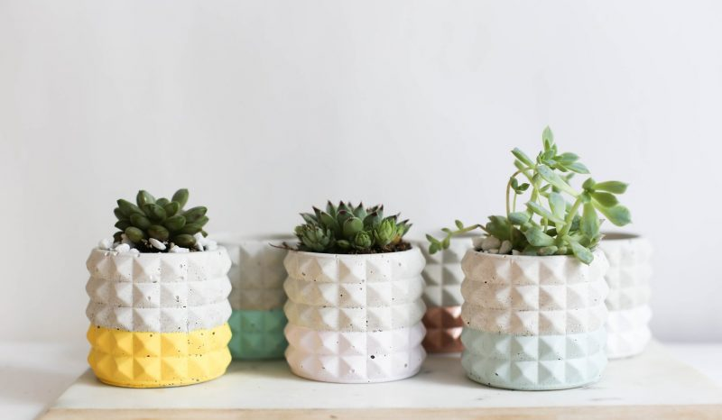 Shop Handmade Mother's Day Gift Ideas For Mom: Mod Concrete Planters from Anne Taylor Co