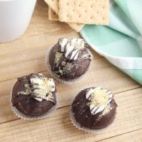 Easy DIY S'mores Hot Chocolate Bombs Recipe For Camping Fun