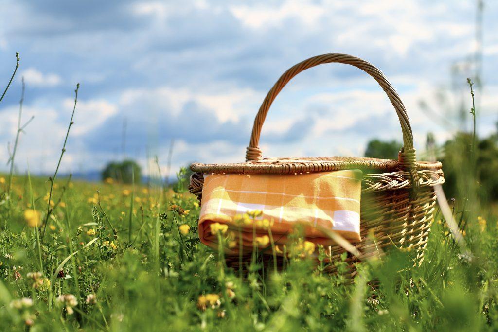 picnic menu-HelloFresh
