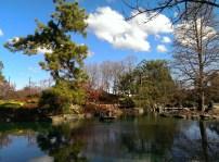 Auburn Japanese Gardens