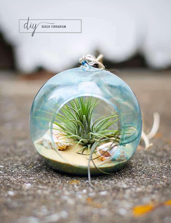 DIY Tinted Glass Beach Terrarium