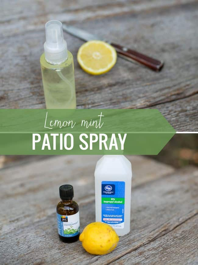 Lemon mint patio spray | 3 Ways to Repel Bugs Naturally