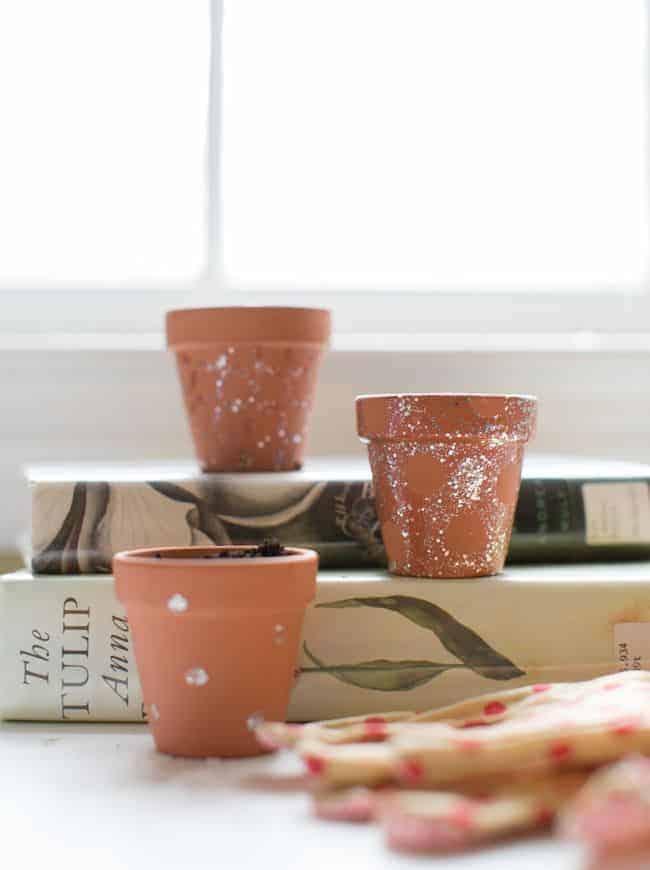 DIY Nail Polish Mini Planters   Hello Glow