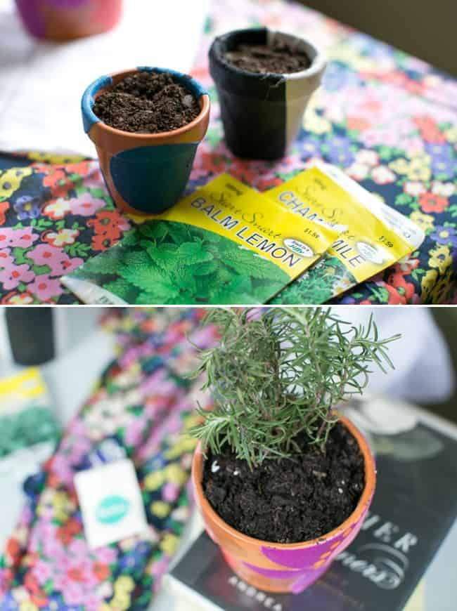 DIY Fabric Covered Planters - Hello Glow