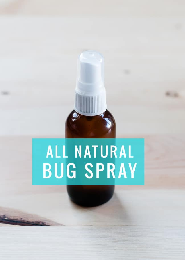 DIY All Natural Bug Spray   Hello Glow