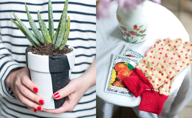 A Beauty Herb Garden with Boden - Hello Glow