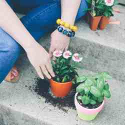 Naturally Inspired: Our 5 Favorite Garden Projects for Spring
