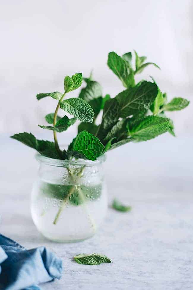 Beauty and Health Benefits of Mint Inside + Out