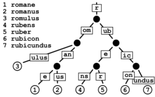 Tree for Auto Correcter and Spell Checker