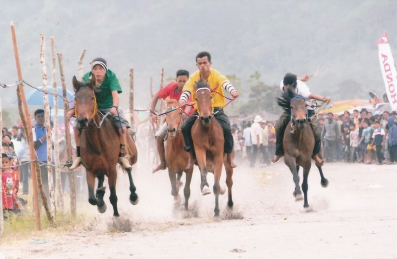Aceh Horse Racing