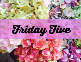 Friday Five: Five Blogs I'm Loving Reading
