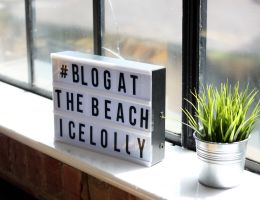 Surviving a Blogging Event as an Introvert
