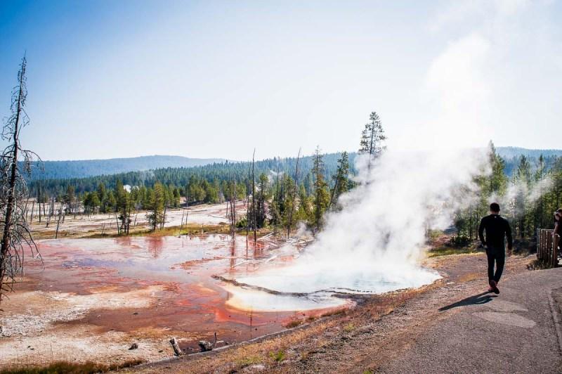 au bord des geysers de yellowstone