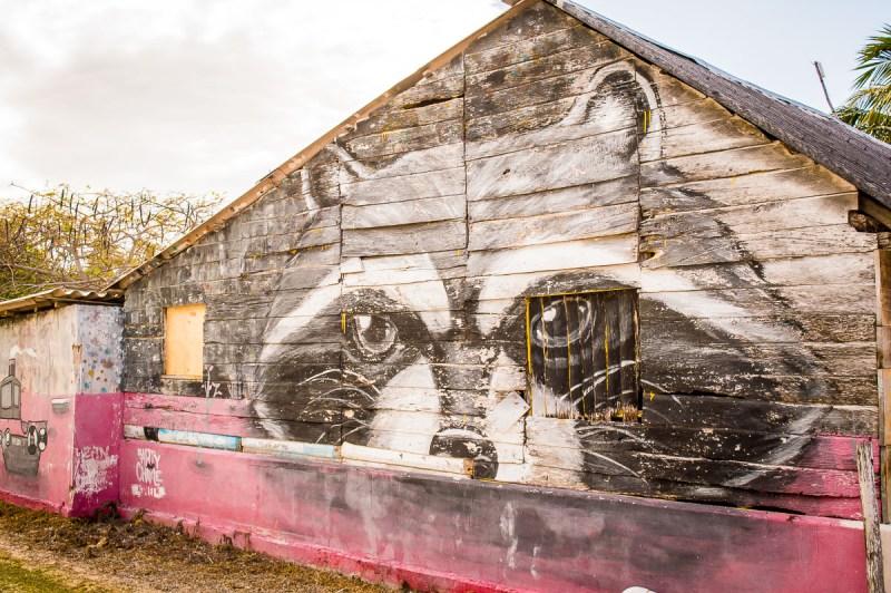 façade raton street art à holbox