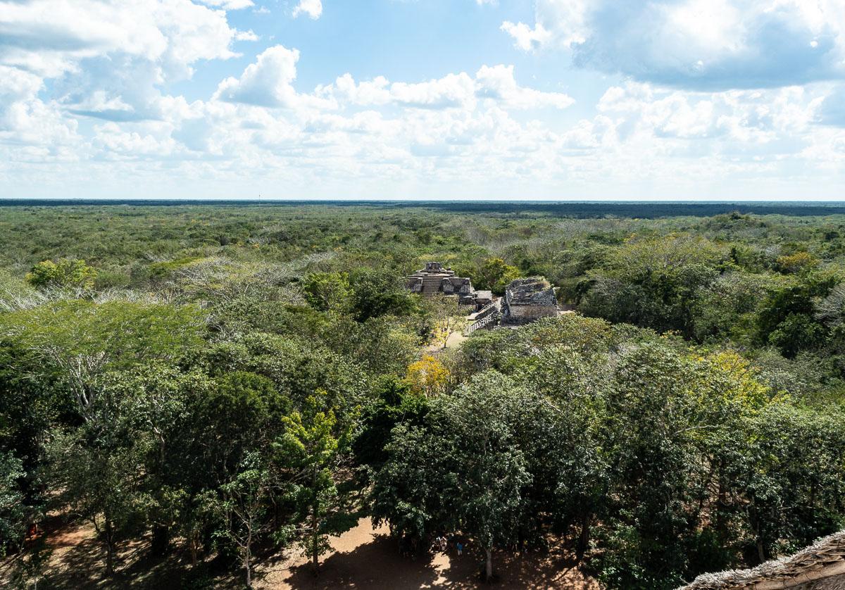 vue sur la jungle en haut de ek balam