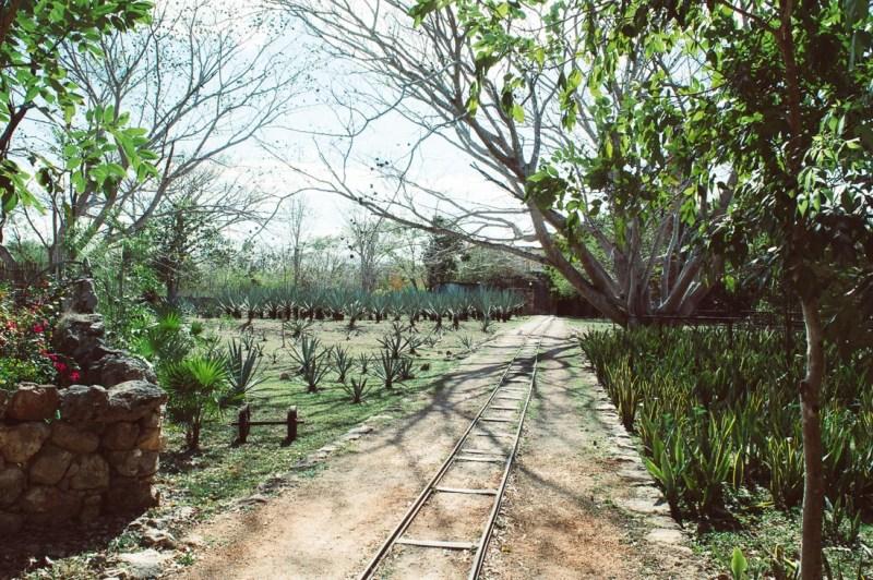 rail dans l'hacienda Pedro de ochil