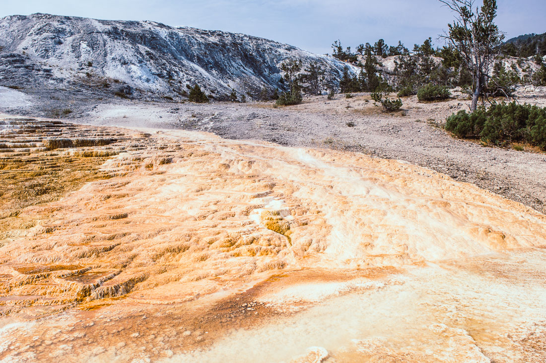 vasques en travertin au Yellowstone