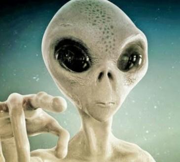 Alien in Pune