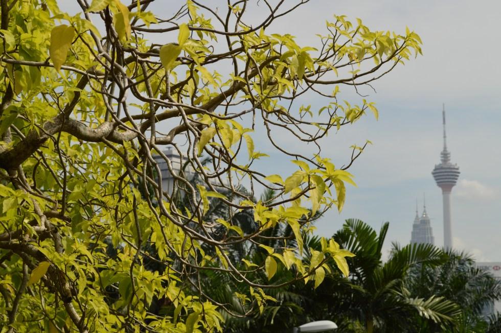 Lake Garden | Free Things to do in Kuala Lumpur | Hello Raya Blog