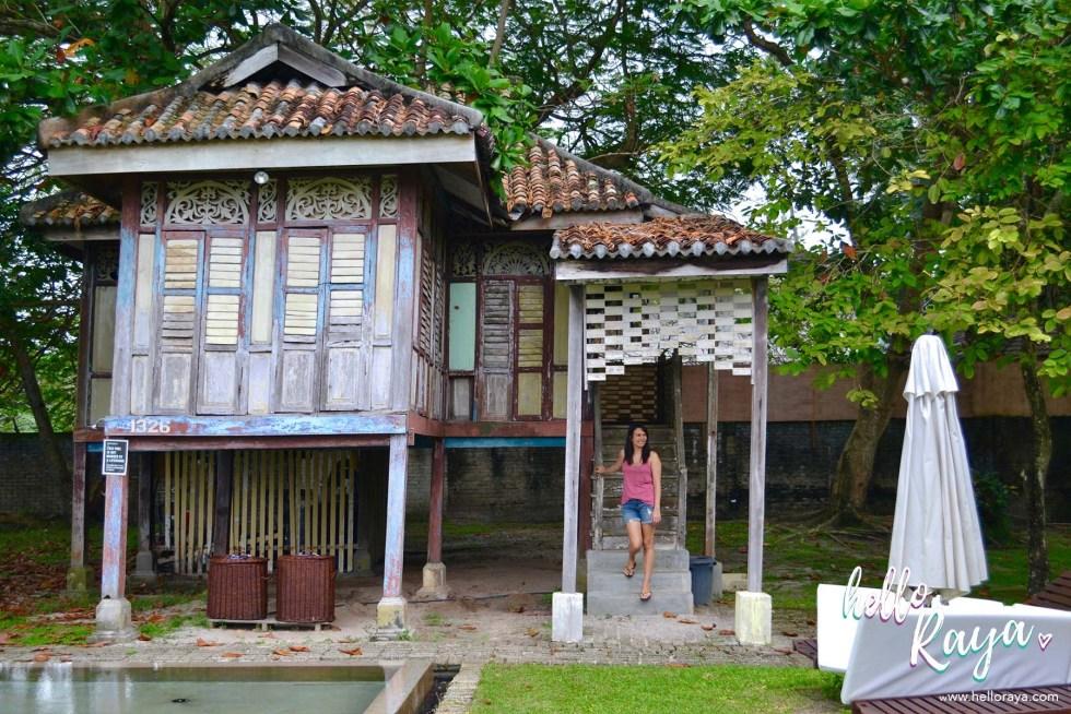 Temple Tree at Bon Ton Langkawi - Pool Area | Hello Raya Blog