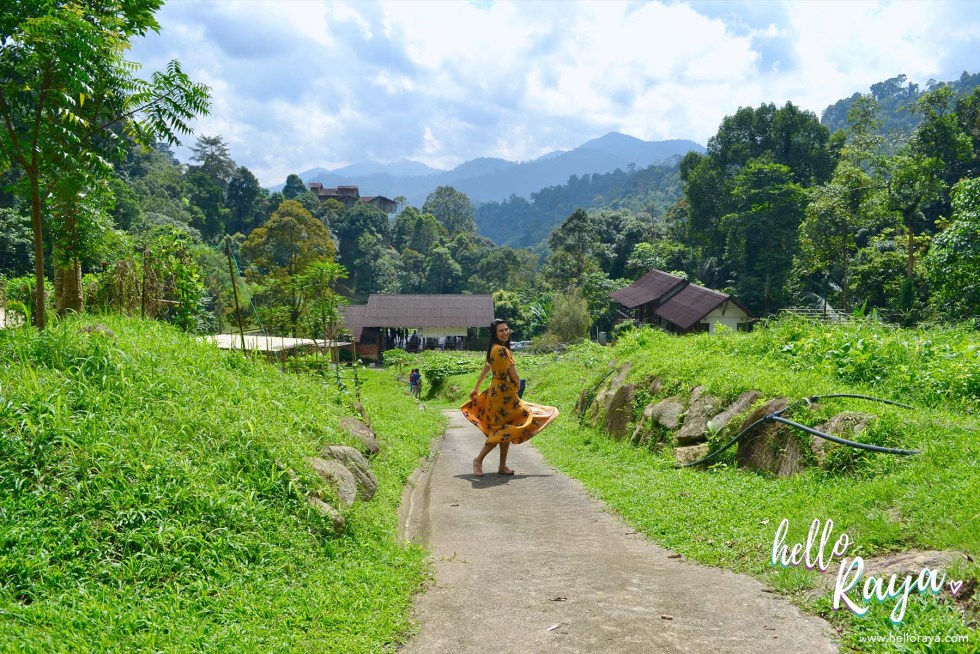 Road Trip Malaysia - A Little Farm on the Hill | Hello Raya Blog