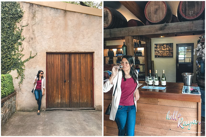 Barossa Valley Wineries - Yalumba | Hello Raya Blog