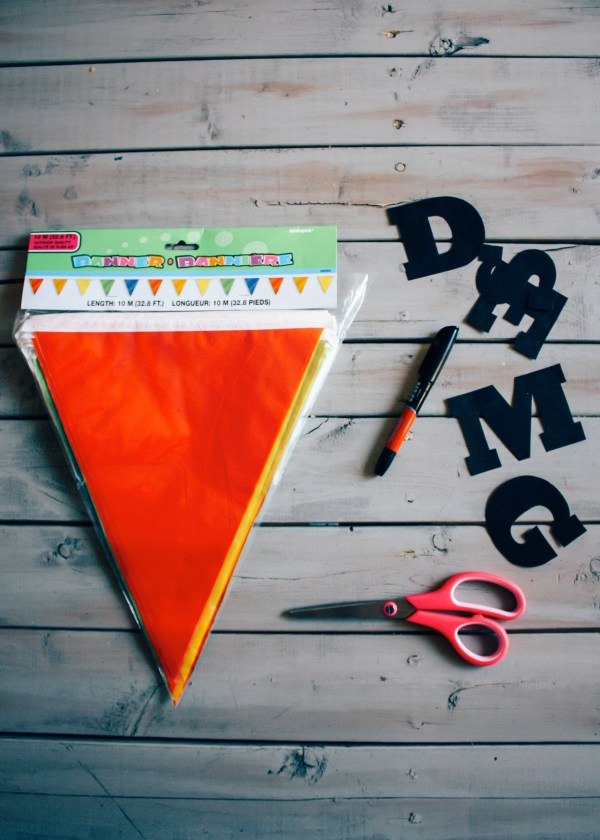 moonrise-kingdom-flag-diy-22