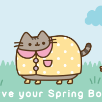 Pusheen Box Spring 2017 FULL SPOILERS!