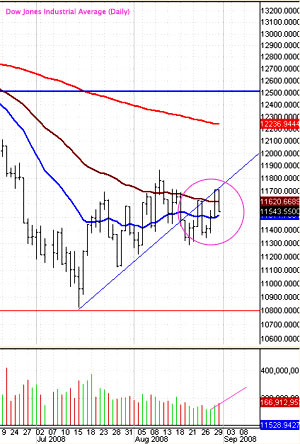 Market 08/25 - 08/29